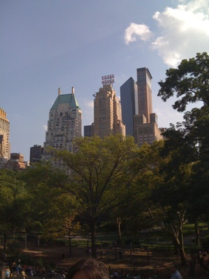 This is a View from The Rock At Central Park